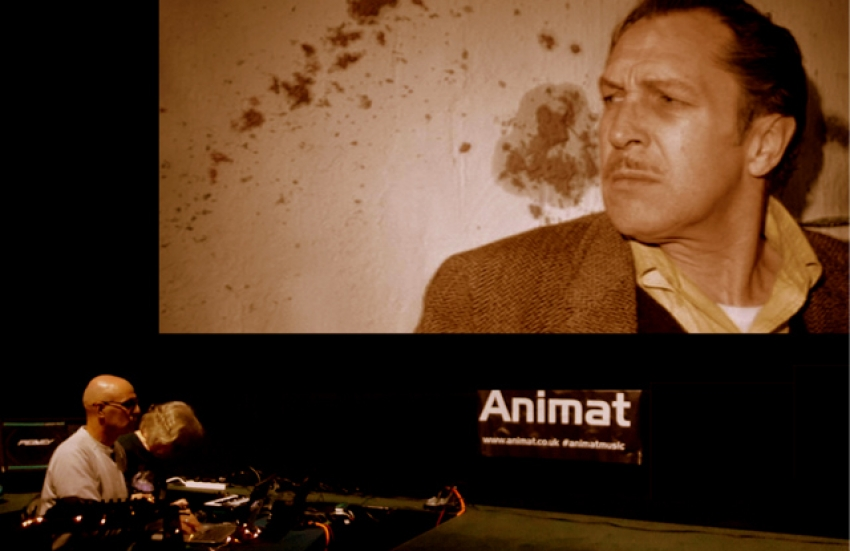 Animat perform The Last Man On Earth